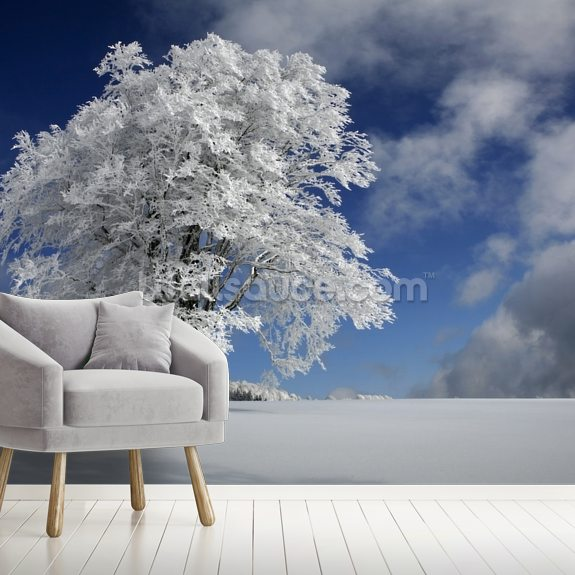 White Windbuche in Black Forest wallpaper mural room setting