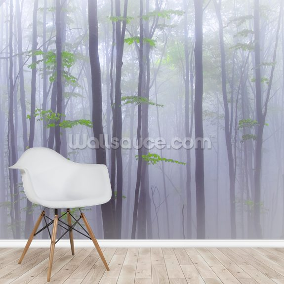 Misty wallpaper mural room setting