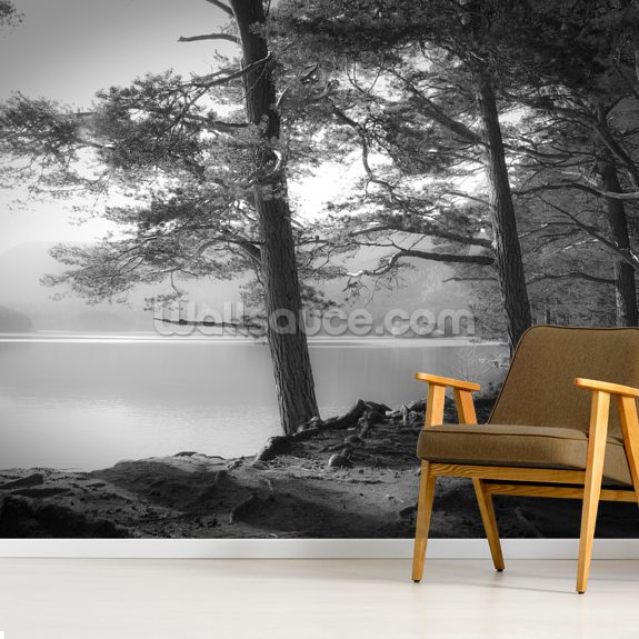Loch an Eilein mural wallpaper room setting