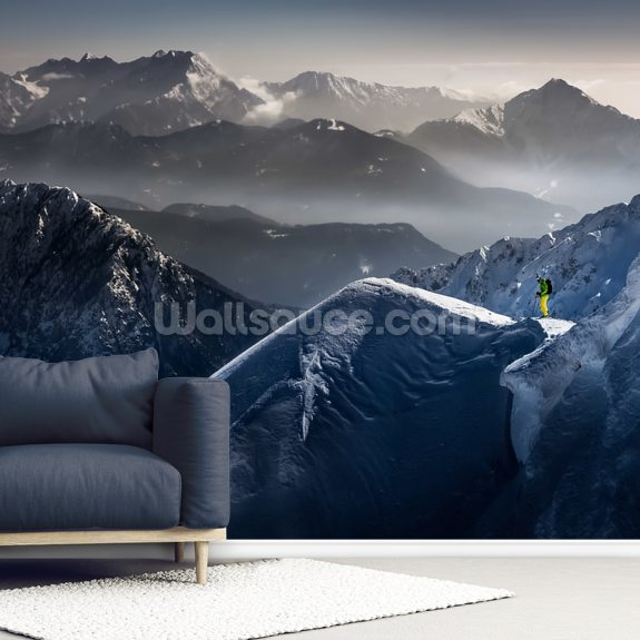 Silent Moments before Descent mural wallpaper room setting