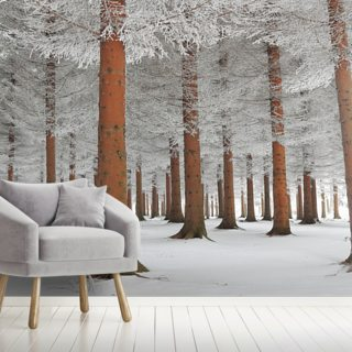 In White Wallpaper Wall Murals