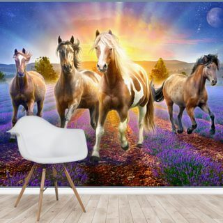 Horses In The Lavender Field Wallpaper Wall Murals