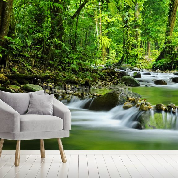 Beautiful Mountain Stream wallpaper mural room setting