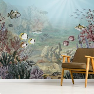 Coral Creatures Wallpaper Wall Murals