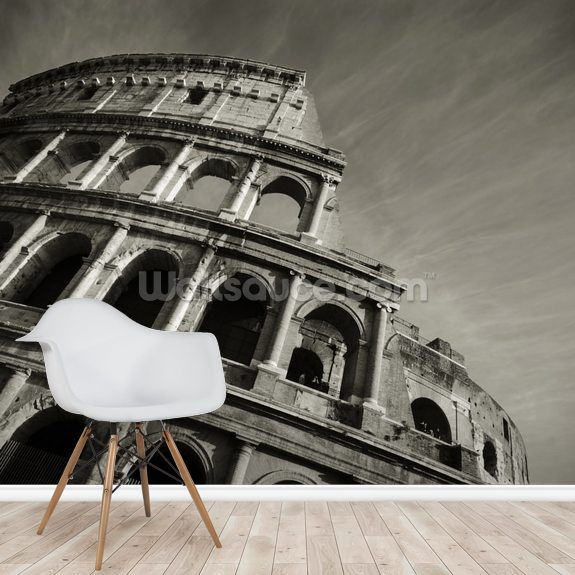 Colosseum - Black and White wall mural room setting
