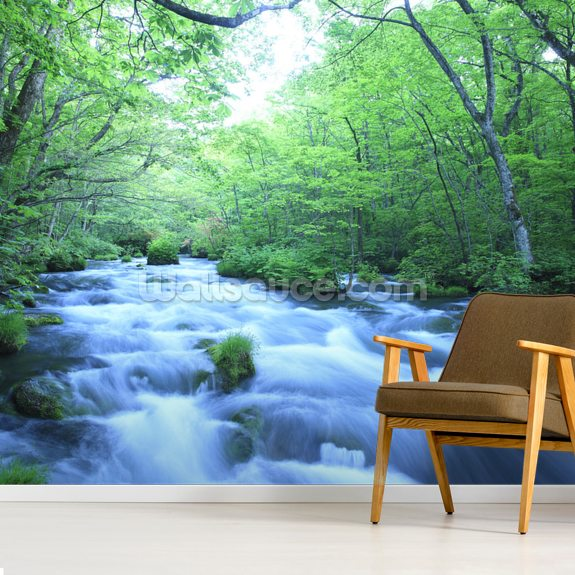 Spring Forest River mural wallpaper room setting