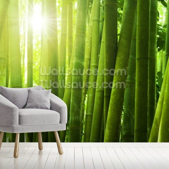 Bamboo forest wallpaper mural room setting