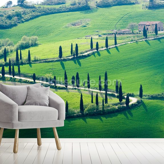 Tuscany Hills mural wallpaper room setting