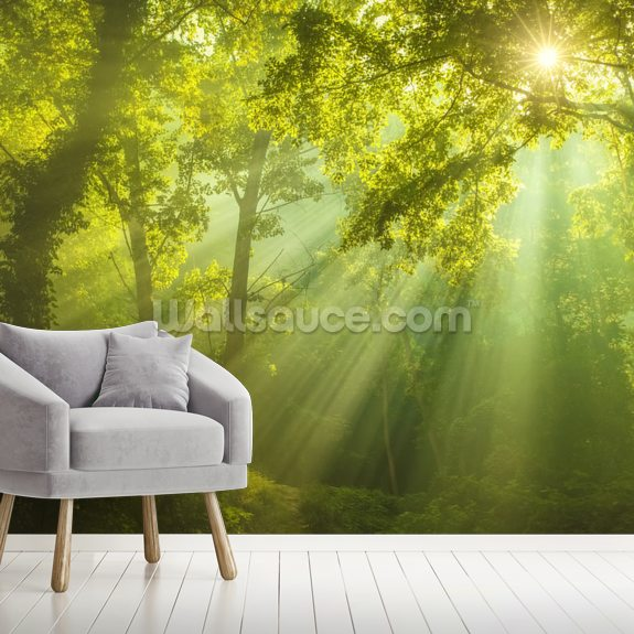 The Forest of Heaven wall mural room setting