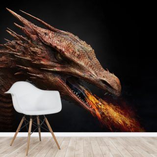 Dragon Wallpaper Wall Murals
