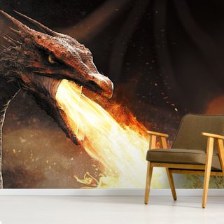Dragon Fire Wallpaper Wall Murals