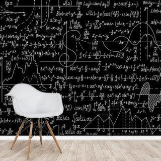 Plots, Formulas and Calculations Wallpaper Wall Murals