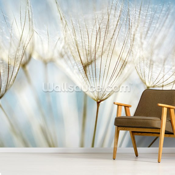 Abstract Dandelion Flower wall mural room setting