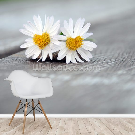 Daisy Twins wallpaper mural room setting
