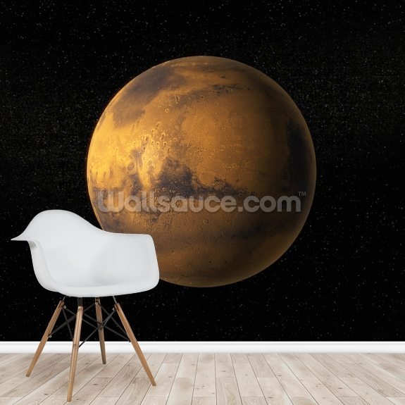 A View of Planet Mars wall mural room setting