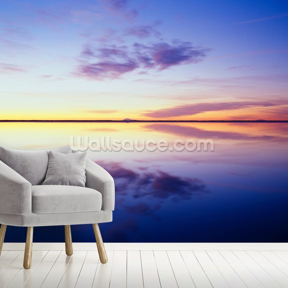 Sunrise Reflected in Flooded Desert mural wallpaper room setting