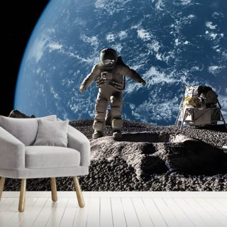 The Astronaut Wallpaper Wall Murals