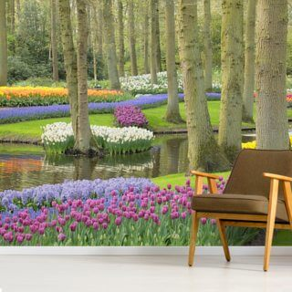 Keukenhof Flowers Gardens Wallpaper Wall Murals