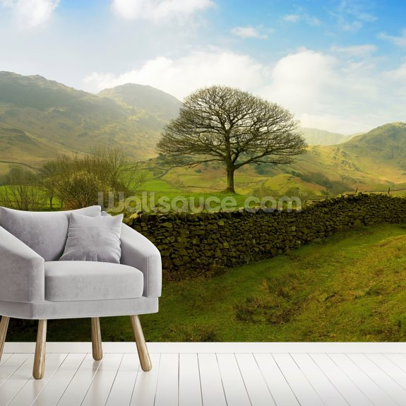 Rural Lake District Hills wall mural room setting