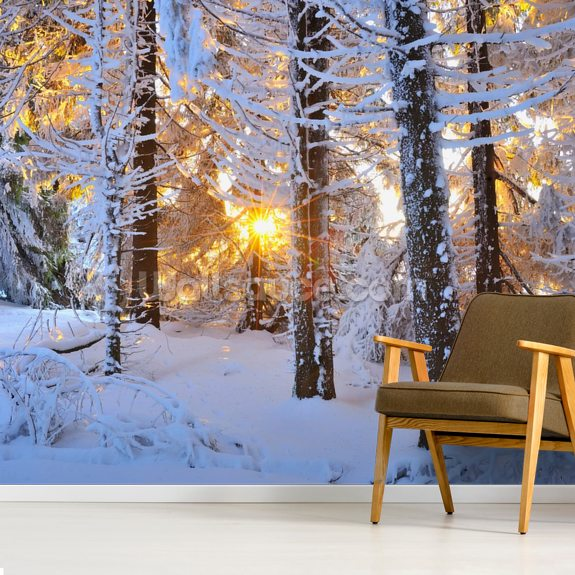 Snow Covered Trees wall mural room setting