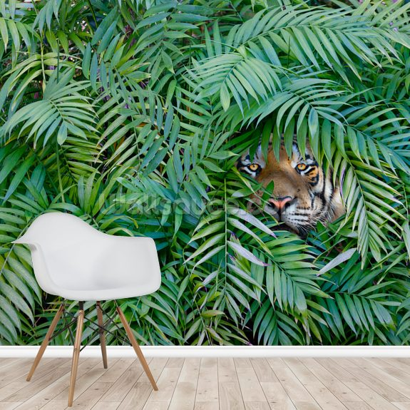 Tiger Hide and Seek mural wallpaper room setting