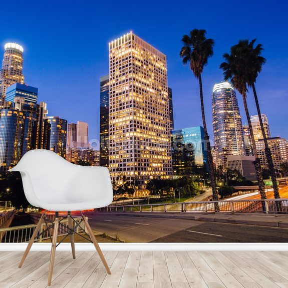 Los Angeles - California wall mural room setting