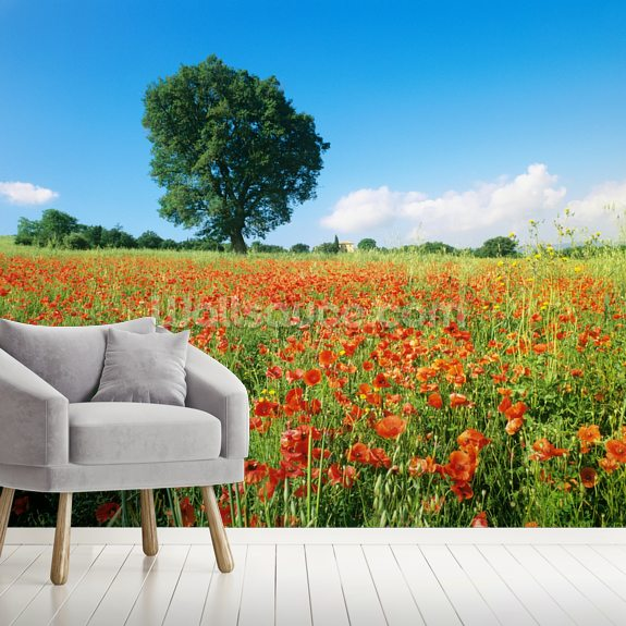 Sunny Spring Poppies wallpaper mural room setting