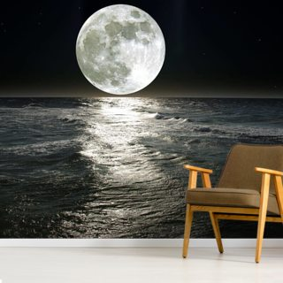 Moon Wallpaper Wall Murals