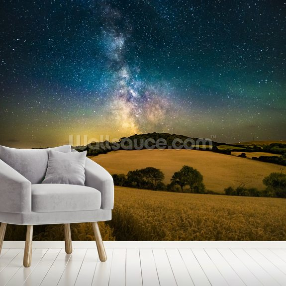 A path to the stars wall mural room setting