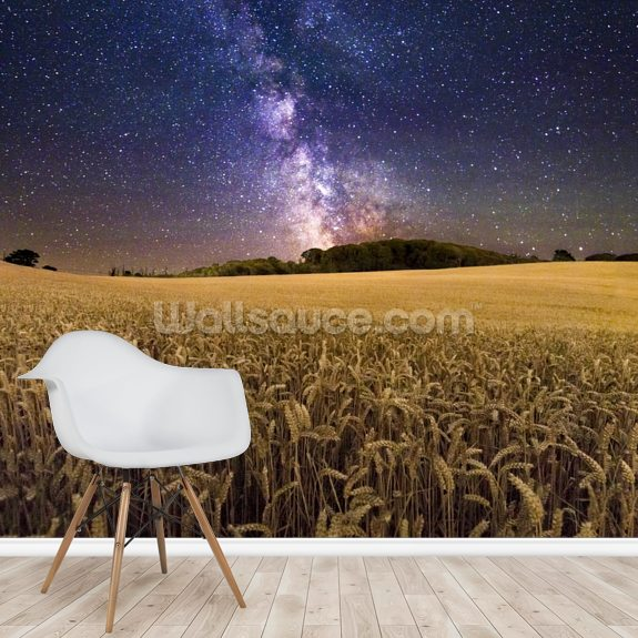 Fields of gold wallpaper mural room setting