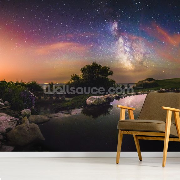 Milky way reflection wallpaper mural room setting