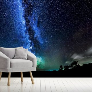 Too Many Stars to Count Wallpaper Wall Murals