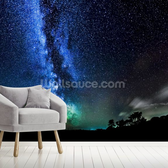 Too many stars to count - Milky Way mural wallpaper room setting