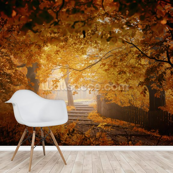 Turn to Fall wallpaper mural room setting