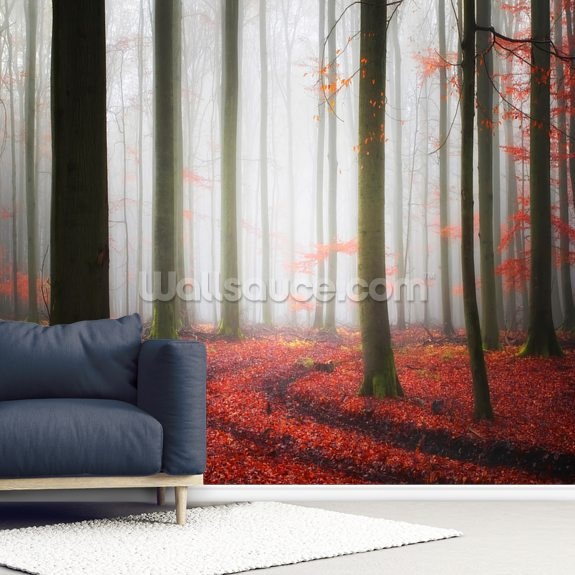 Autumnal Tracks wallpaper mural room setting