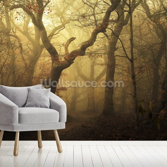 Forest Dawn wallpaper mural room setting