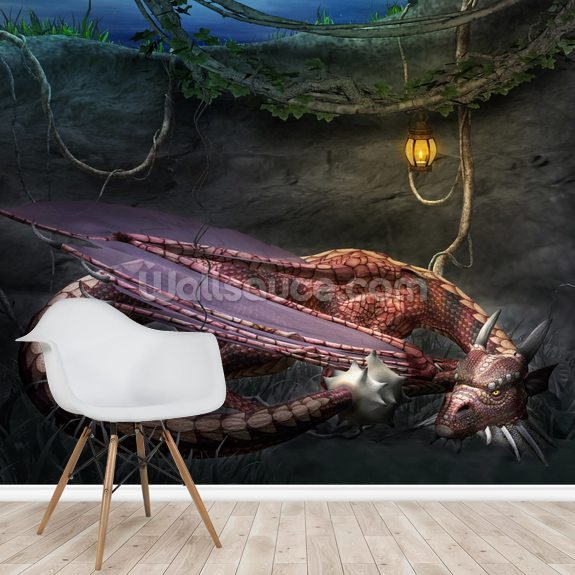 Dragons Cave wall mural room setting