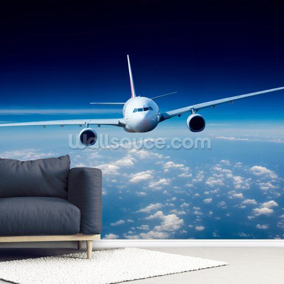 Passenger Airliner Wallpaper Mural