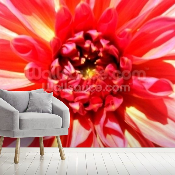 Total Victory (colour photo) wallpaper mural room setting