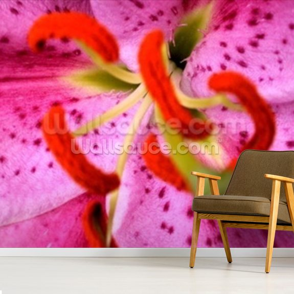 Pink Aroma (colour photo) wall mural room setting