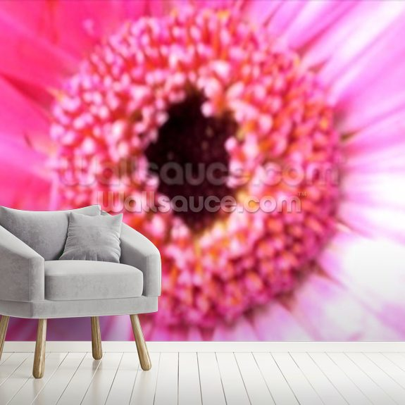 Bridesmaid Pink (colour photo) wall mural room setting