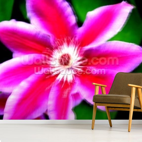 Winds of Change (colour photo) wall mural room setting