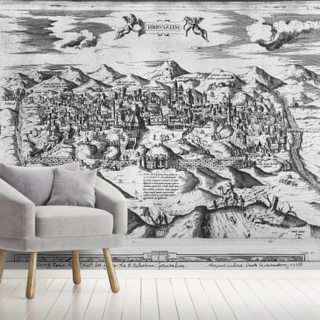View of Jerusalem, 1570 ? (engraving) (b/w photo)