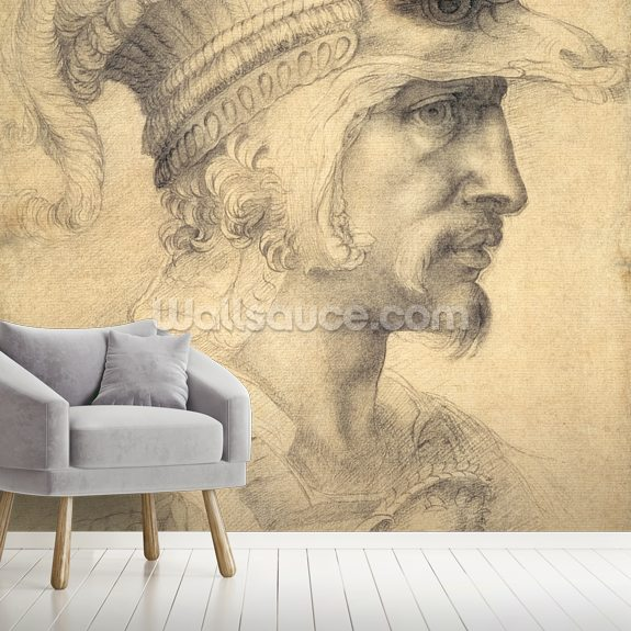 Head of a Warrior mural wallpaper room setting