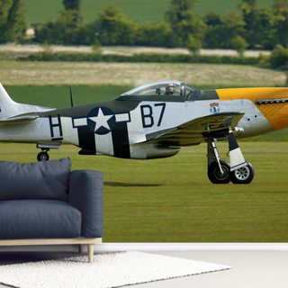 P51 Mustang Ready for Action