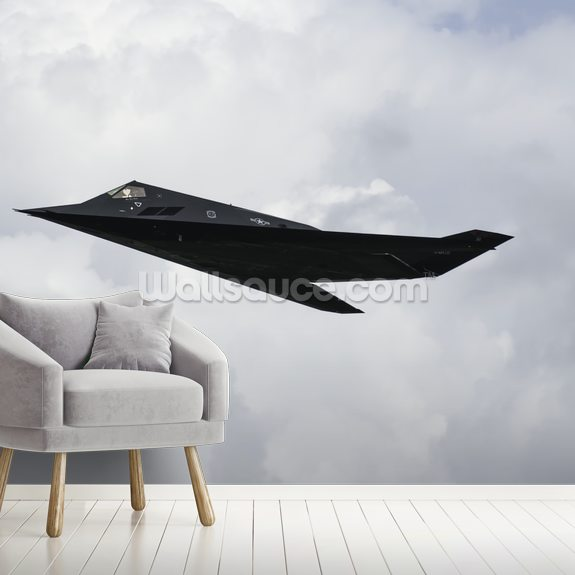 Stealth Fighter mural wallpaper room setting