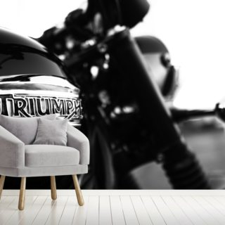 Triumph Wallpaper Wall Murals