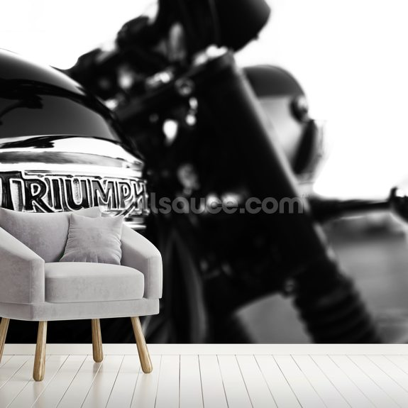 Triumph wall mural room setting