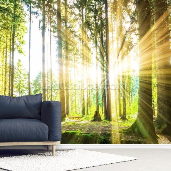 Forest Sun mural wallpaper room setting