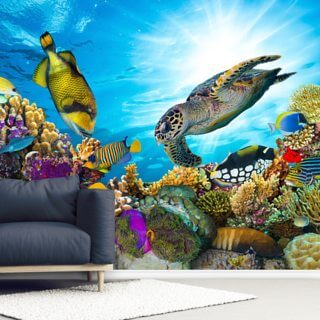 Coral Reef Diversity Wallpaper Wall Murals
